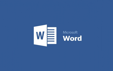 MS - Word Basics